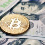 Обзор рынка криптовалют для начинающих трейдеров